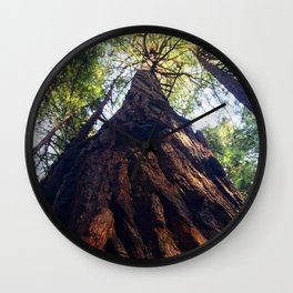 Muir Woods Wall Clock