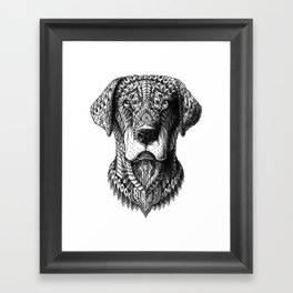 Labrador Framed Art Print