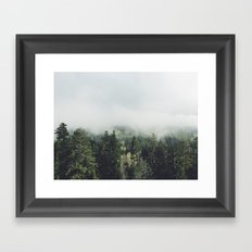 Foggy Treetops Framed Art Print