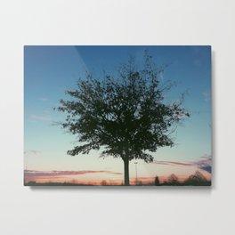 Stand Alone Tree Metal Print