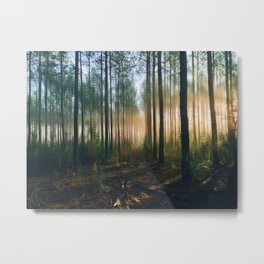 The orangish sunshine Metal Print