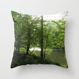 Watercolor Landscape Eno River 05, NC Throw Pillow