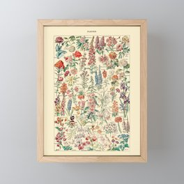 Vintage Floral Drawings // Fleurs by Adolphe Millot 19th Century Science Textbook Artwork Framed Mini Art Print