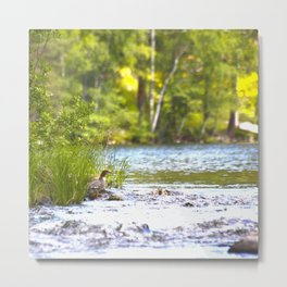 By The Lake Metal Print