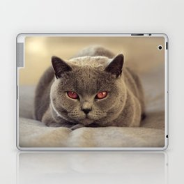 Superstar Diesel the Cat ! Laptop & iPad Skin