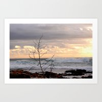 Winter beach Art Print