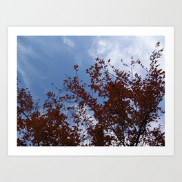 Some of the Leaves, More of the Sky Art Print