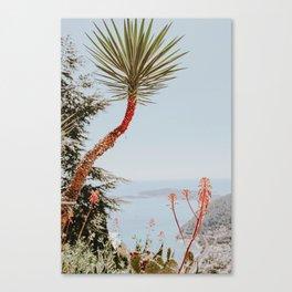 Èze / France Canvas Print