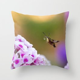 Clearwing Hummingbird Moth over Pink Phlox Throw Pillow