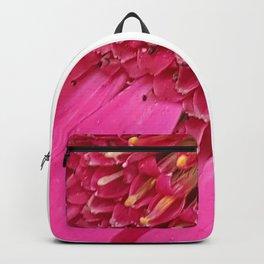 Pink Sunburst Backpack