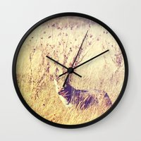 coyote Wall Clocks featuring Coyote  by Shelby Babbert Photography
