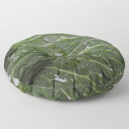 Nature's green and diamonds (2nd in the Cabbage collection) Floor Pillow