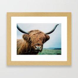 Highland Framed Art Print