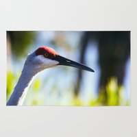 crane Area & Throw Rugs featuring Sandhill Crane by Roger Wedegis