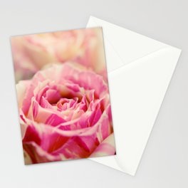 Vanilla Cupcake Stationery Cards