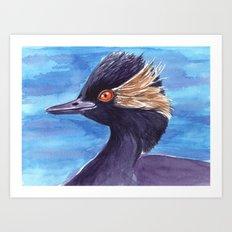 Grebe bird Art Print