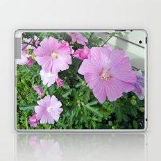 Pink Musk Mallow Bush in Bloom Laptop & iPad Skin