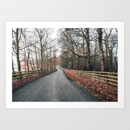 winter country lane Art Print