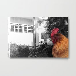 Its a chicken! Metal Print
