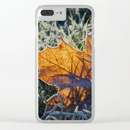 Wintertime Gold leaf in frozen sparkling grass at backlight Clear iPhone Case