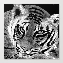 Tiger with White Background Canvas Print