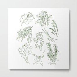 Herbs Metal Print