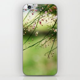 Make a wish iPhone Skin