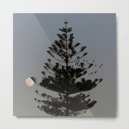 Araucaria tree, full moon, flight of birds Metal Print
