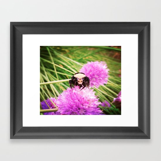 Bumble Bee Framed Art Print