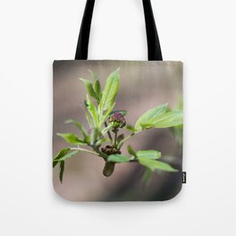 Spring Buds 4 Tote Bag