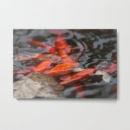 Nature Metal Print