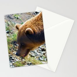 Griz - Wildlife Art Print Stationery Cards