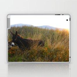Volcanes Laptop & iPad Skin