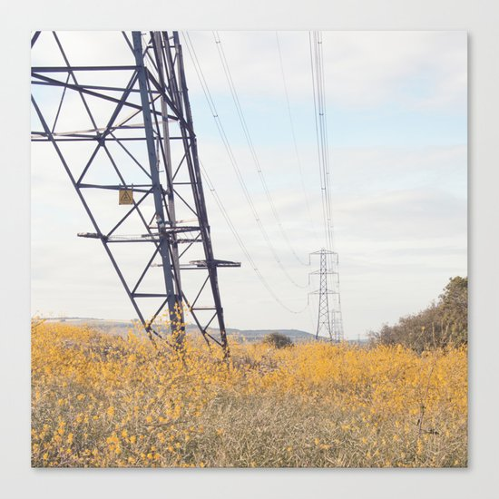 yellow lines... Canvas Print