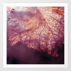 water leaf Art Print