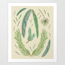Pine Bough Study Art Print