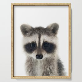 Baby Racoon Serving Tray