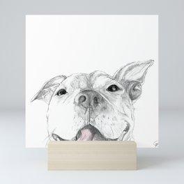Whaddup :: A Pit Bull Smile Mini Art Print