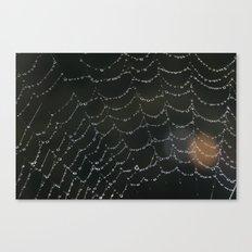 Moring drops Canvas Print