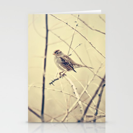 Sweet little bird sitting on a branch Stationery Cards