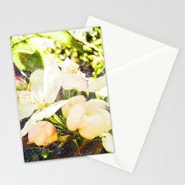 Apple of my Eye Stationery Cards