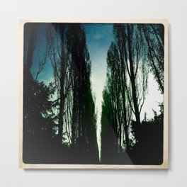 Poplars Metal Print