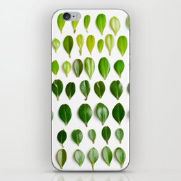 ombre leaves iPhone Skin