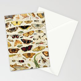 "Jan van Kessel the Elder ""An Extensive Study of Butterflies, Insects and Seashells"" Stationery Cards"