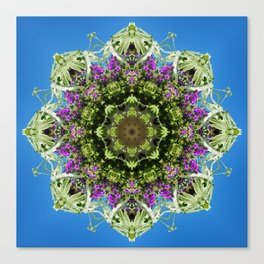 Intricate floral kaleidoscope - Vebena, Dichondra leaves with blue sky Canvas Print
