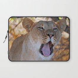 Tired lion - Africa wildlife Laptop Sleeve