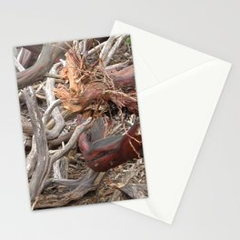 TEXTURES - Manzanita Drought Conditions #4 Stationery Cards