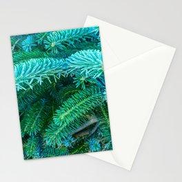 Fantastic Blue Spruce Stationery Cards
