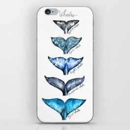 Whale tails iPhone Skin