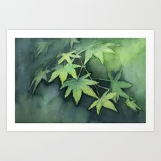 Japanese Maple Watercolor Green Leaves Tree Branch Nature Art Print